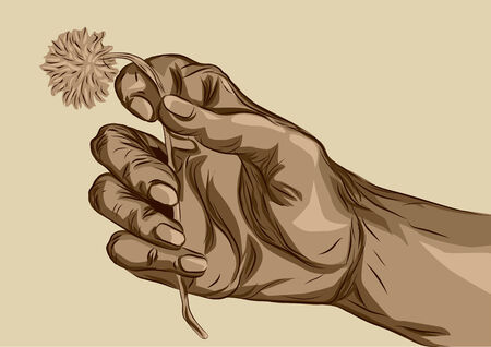 hand holding flower: hand holding flower  human hand with abstract flower Illustration
