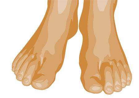 chiropody: human feet isolated on a white background Illustration
