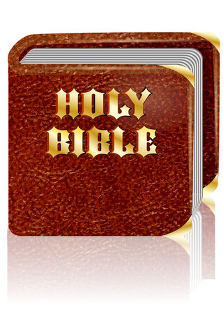 testaments: holy bible on a white background with reflection