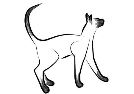 siamese: siamesische Katze Umriss abstrakte Katze isoliert auf wei�