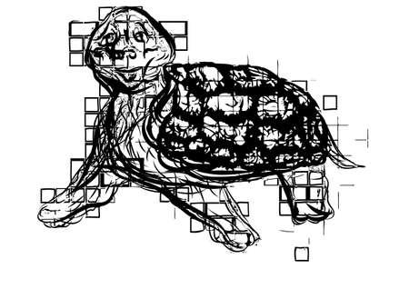 turtle isolated: abstracto tortuga divertida aisladas sobre fondo blanco
