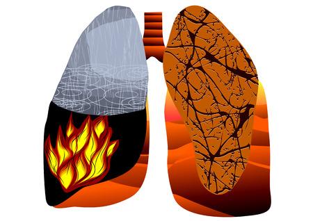 poumon humain: la tuberculose. poumon humain abstrait isol� sur blanc