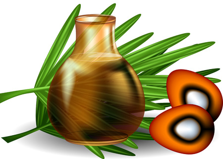 red palm oil: palm oil with palm leaves on white background Illustration