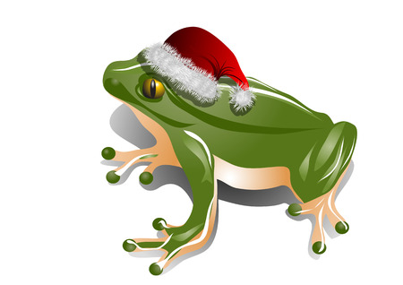 christmas frog in christmas hat  isolated on white Vector