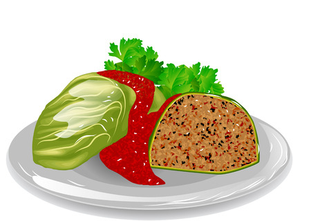 cabbage roll isolated on a white background Illustration