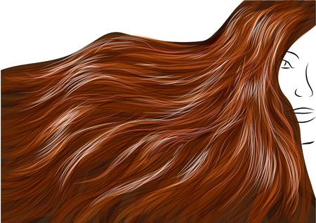 茶髪: 美しい茶色の髪、白い背景で隔離