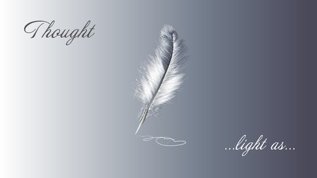 white feather and slogan on grey background Illustration