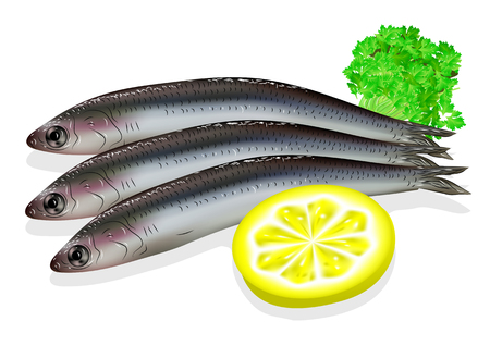 pilchard: food anchovy with lemon on white background