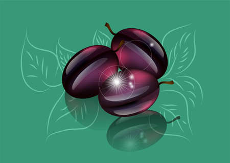 purple leaf plum: plums tree. abstract fruits on green background