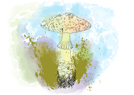blotchy: poisonous mushroom on abstract multicolor background