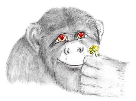 grimace: monkey with flower Stock Photo