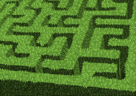groene haag bloembed als doolhof Stock Illustratie