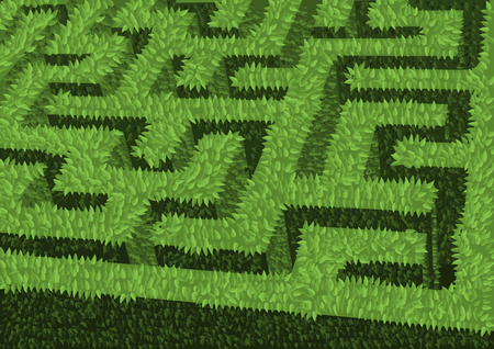 green hedge flowerbed as maze Illustration