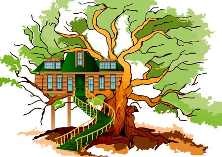 tree house: tree house and oak isolated on white