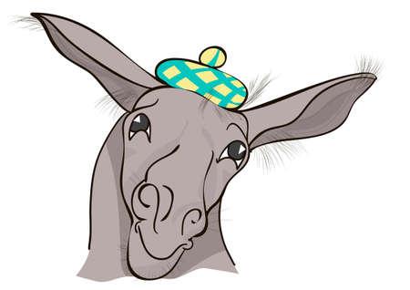 funny donkey: funny donkey isolated on a white background Illustration
