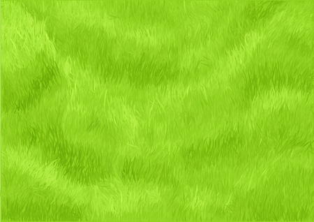 lawn: grass background. green meadow in a park Illustration