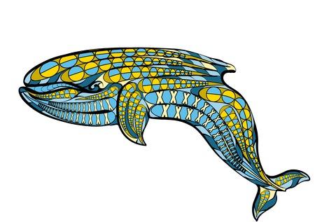ballena azul: ballena azul �tnico aislado en fondo blanco