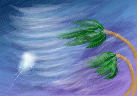 orkaan en palm. storm met regen en bliksem