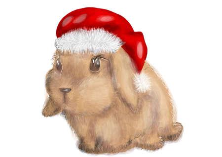 bunny xmas: rabbit with christmas hat isolated on white background