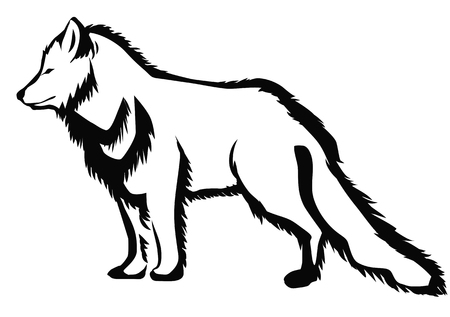 arctic: arctic fox abstract silhouette on white background