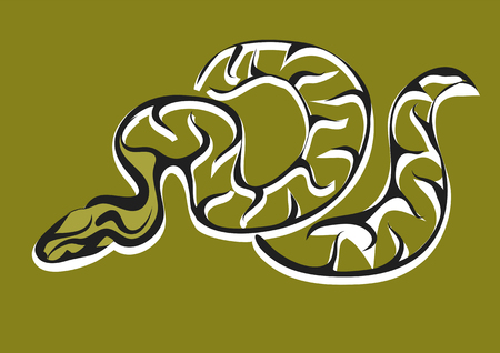 constrictor: royal python. abstract serpent on gray background