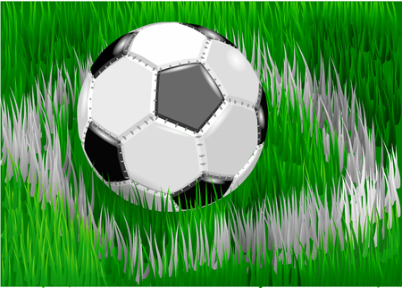 grass field: soccer ball on green grass of soccer field