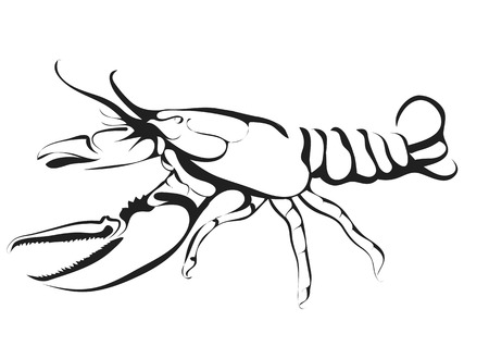 marine crustaceans: abstract silhouette of lobster isolated on white background