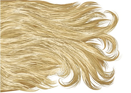 long straight hair: blonde hair isolated on a white background Illustration