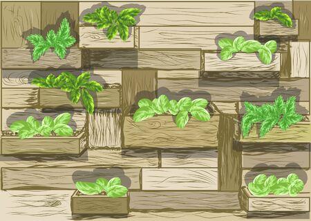 vertical garden: garden wall. vegetable in decorated vertical garden Idea