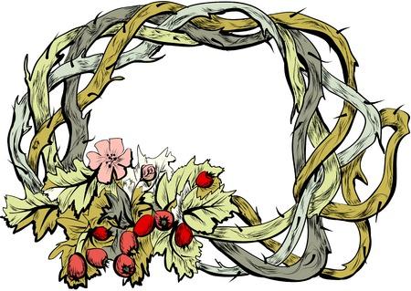 サンザシの花と白い背景のベリー