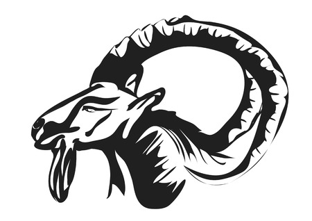 capricornio: Ibex silueta abstracta aislado sobre fondo blanco Vectores