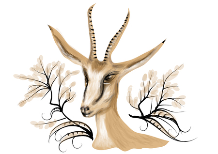 Springbok. animal isolated on a white background Illustration