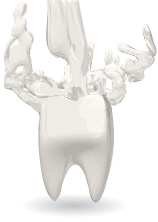 enamel: dairy products strengthen tooth enamel Illustration