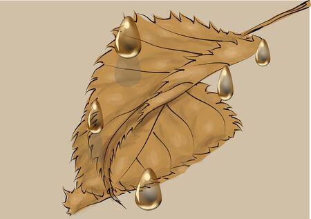 Autumn leaves under the rain. Illustration