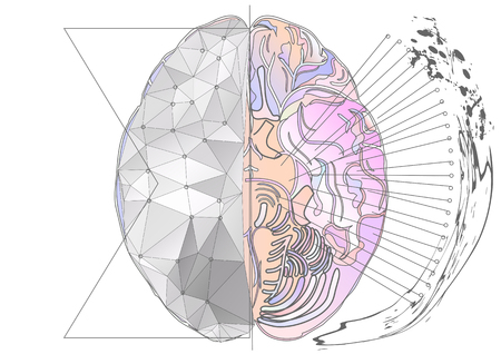 hemisphere: cerebral hemisphere. abstract brain with multicolor line and light Illustration