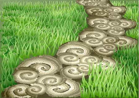 garden path and green drass