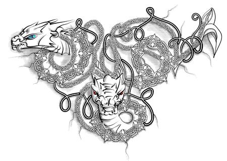 Celtic Double Dragon geïsoleerd op wit