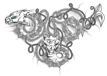 Celtic Double Dragon isolated on white Illustration