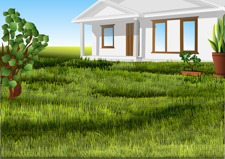 white house on a green lawn. 10 EPS Stock Illustratie