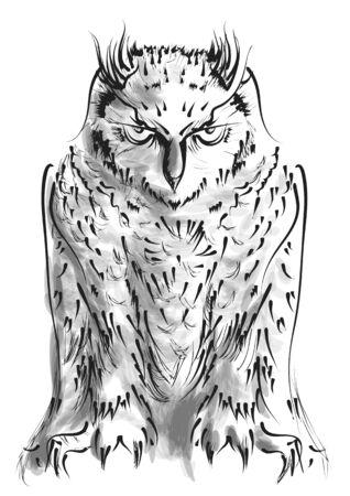 owl isolated on white background. vector illustration