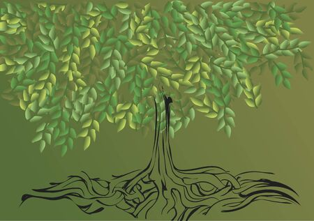root systemof tree. abstract nature background with tree