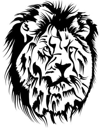 male lion head isolated on white background