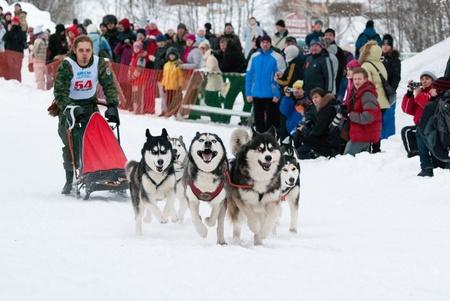 Dog Cup slitta in Russia. Musher e la squadra di Huskies. 6 febbraio 2011 Editoriali