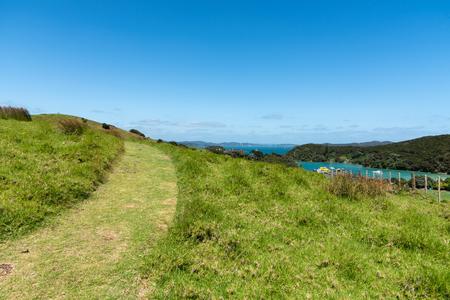 Bush walking trail at New Zealand coastal walk , Bay of Islands New Zealand. Archivio Fotografico - 121491491
