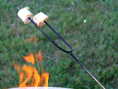 Marshmallows roasting over a camp fire
