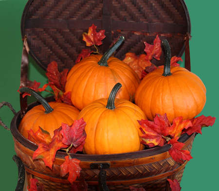 Basket with pumpkins and autumn leaves against green background