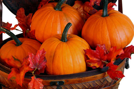 Pumpkins in basket with leaves for fall decorations Standard-Bild