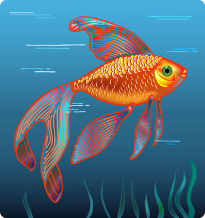 Vector illustration of golden fish isolated on whater background