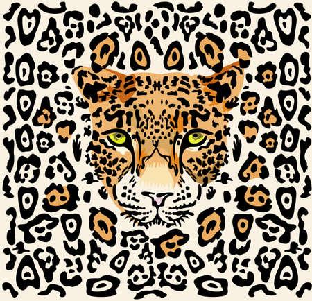 carnivoros: Patr�n con un hocico de un leopardo. Disponible como Ilustrador-Archivo