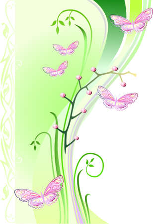 Orchids and butterflies on green waved background  Vector